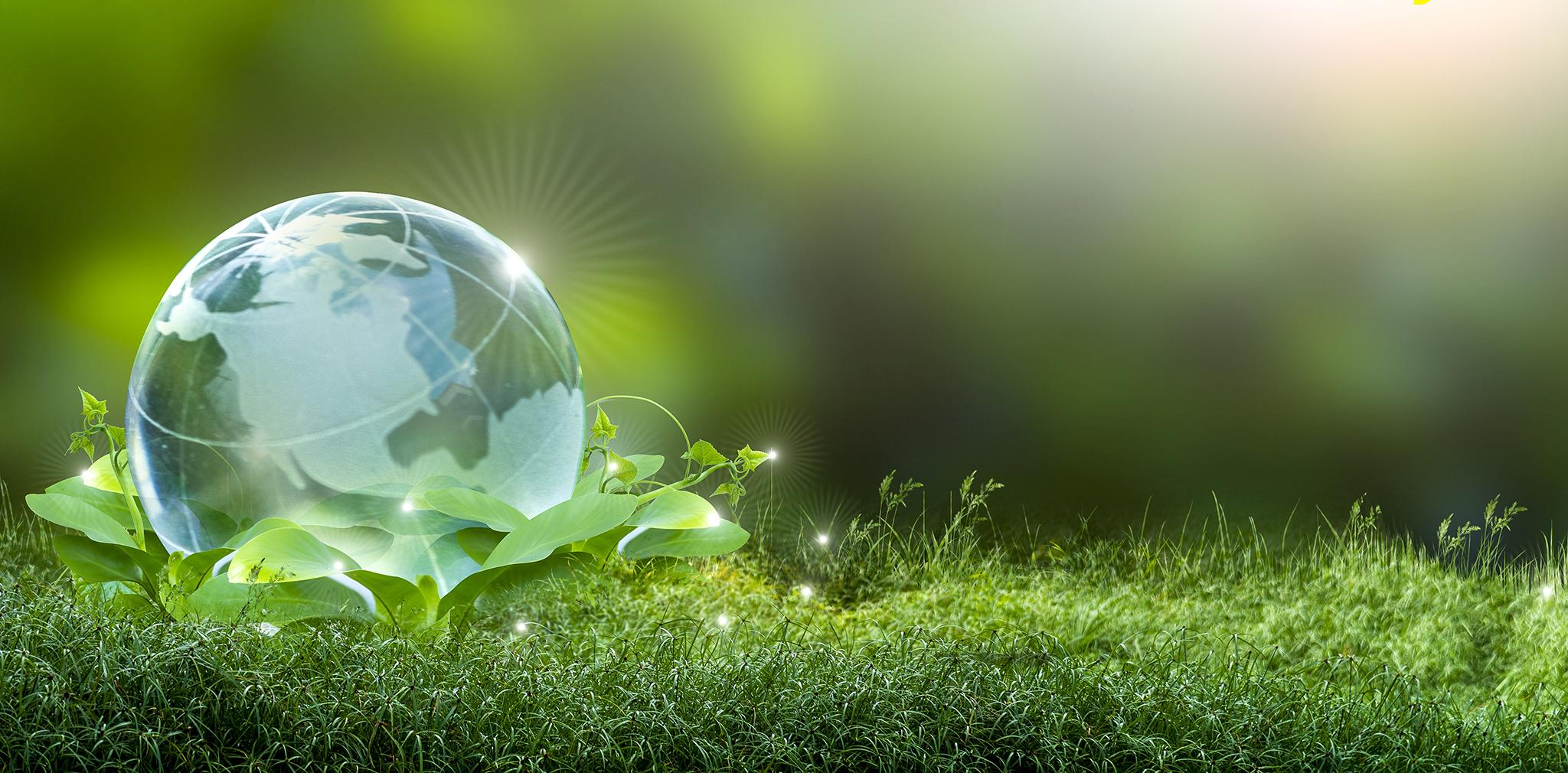 Curso Gestión Medioambiental Hispalform